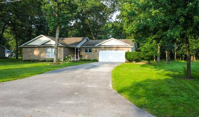 Demotte Single Family Home For Sale: 10676 Georgetown Drive