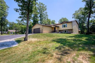 Single Family Home For Sale: 10795 N 565 E