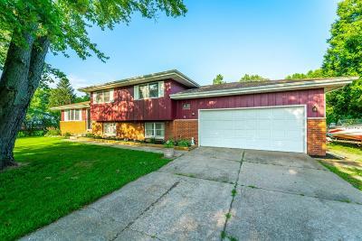 Demotte Single Family Home For Sale: 9953 Carol Drive