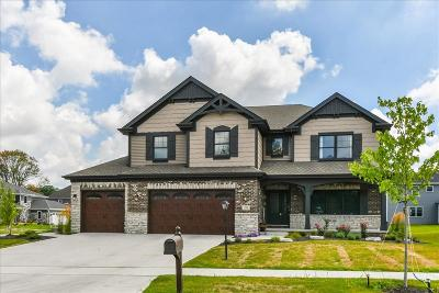 Single Family Home For Sale: 821 Schilling Drive