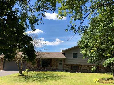 Single Family Home For Sale: 10646 N 400 W