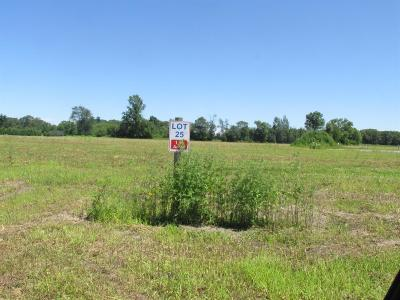 Residential Lots & Land For Sale: 13326 Buckthorn Court