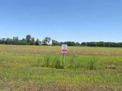 Residential Lots & Land For Sale: 6554 Blackthorn Drive