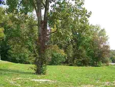 Residential Lots & Land For Sale: 2634 S Crane Pond