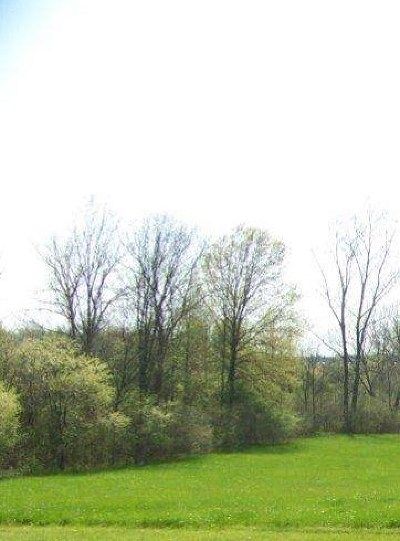 Residential Lots & Land For Sale: 2621 S Crane Pond