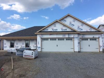 Auburn Single Family Home For Sale: 5573 Bear Creek Pass