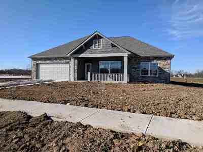 Roanoke Single Family Home For Sale: 11396 Chandon Cove