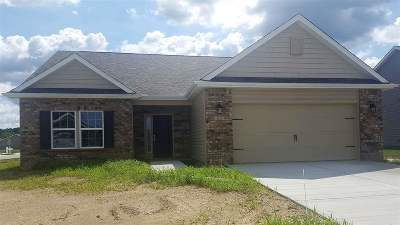 Single Family Home For Sale: 119 Aqueduct Circle (Lot#53)