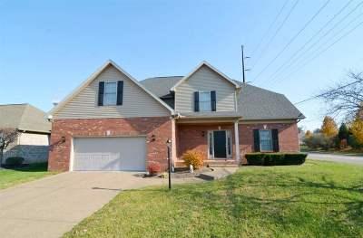 Newburgh Single Family Home For Sale: 4500 Clint Cir