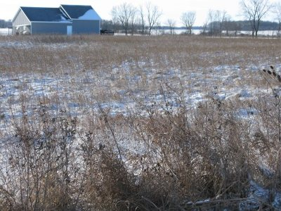 Butler Residential Lots & Land For Sale: County Road 16