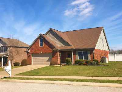 Evansville Single Family Home For Sale: 13135 Ellerston Drive
