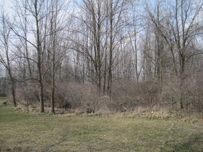 Albion IN Residential Lots & Land For Sale: $33,000