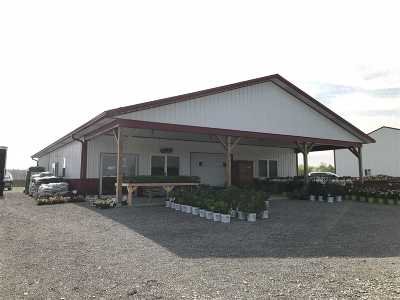 Dale Commercial For Sale: 21915 N County Road 400 E