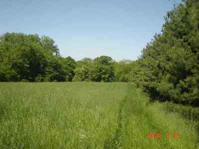Lagrange County, Noble County Residential Lots & Land For Sale: N 75e