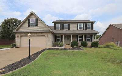 Evansville Single Family Home For Sale: 428 Gish Drive