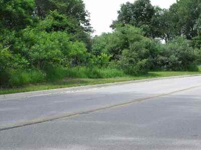 Steuben County Commercial Lots & Land For Sale: 2201 Wohlert