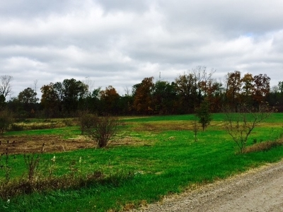 Auburn Residential Lots & Land For Sale: TBD County Road 43