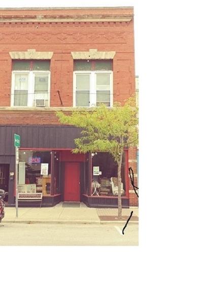 Garrett Multi Family Home For Sale: 109 S Randolph Street