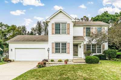 South Bend Single Family Home For Sale: 18141 Burton Drive