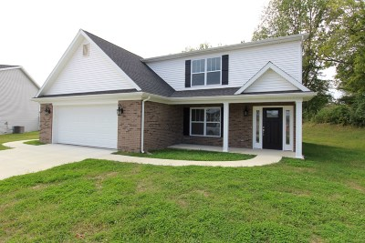 Evansville Single Family Home For Sale: 3615 Dodgers Drive