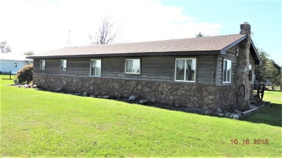 Noble County Single Family Home For Auction: 8251 N State Road 9