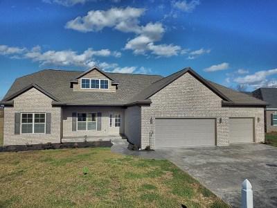 Evansville Single Family Home For Sale: 7930 Bingham Drive