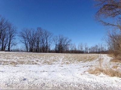 Angola Residential Lots & Land For Sale: W Us Highway 20 Road