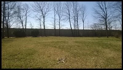 Allen County Residential Lots & Land For Sale: 6606 Orangewood Court