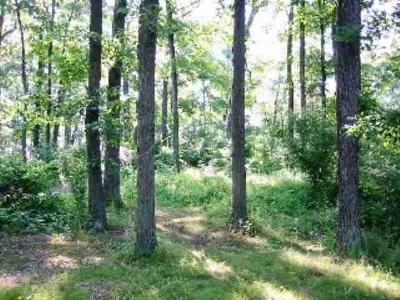 Steuben County Residential Lots & Land For Sale: Lot 34 Lane 650bc Snow Lake