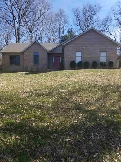 Newburgh Single Family Home For Sale: 5966 Fiesta Drive