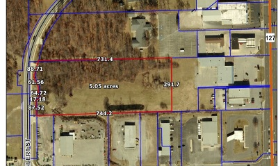 Steuben County Commercial Lots & Land For Sale: Wohlert Street