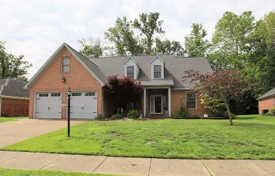 Evansville Single Family Home For Sale: 2829 Brink Drive