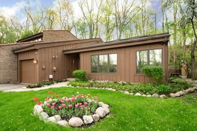 St. Joseph County Condo/Townhouse For Sale: 1724 W North Shore Drive #34 3-A