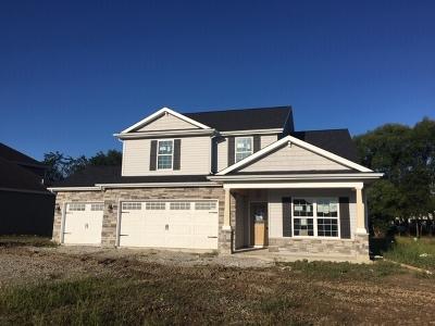 Fort Wayne Single Family Home For Sale: 11581 Prato Cove