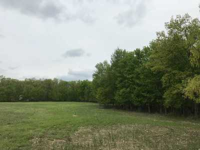 Auburn Residential Lots & Land For Sale: 9006 N County Line Road