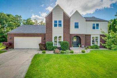 Granger IN Single Family Home For Sale: $264,900