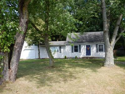 Elkhart Single Family Home For Sale: 52824 County Road 9
