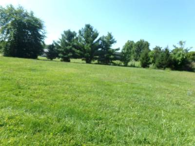 Steuben County Residential Lots & Land For Sale: E State Rd 120