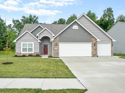 Fort Wayne Single Family Home For Sale: 2371 Painted Desert Run
