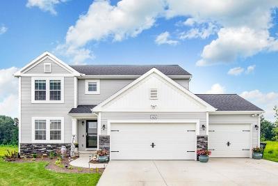 South Bend Single Family Home For Sale: 1424 Mackey Drive