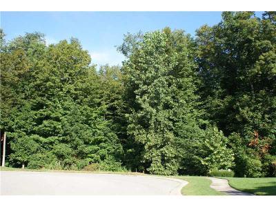 Mc Cordsville, Mccordsville Residential Lots & Land For Sale: 13562 Creekridge Lane