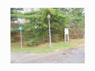 Noblesville Commercial Lots & Land For Sale: 255 Nixon Street