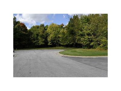 Brownsburg Commercial Lots & Land For Sale: Tbd Maplehurst Drive