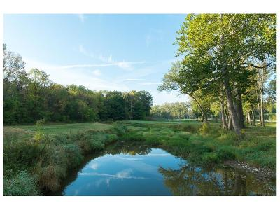 Zionsville Farm For Sale: 601 South County Road 900