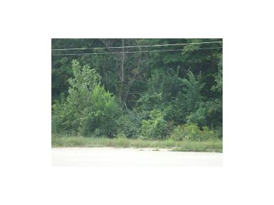 Henry County Residential Lots & Land For Sale: South Memorial Drive