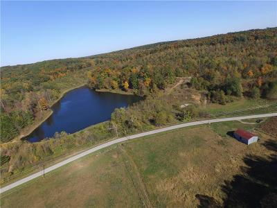 Residential Lots & Land For Sale: Mineral-Koleen Road