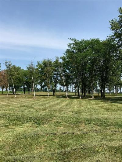 Lebanon Commercial For Sale: 3201 North State Road 39