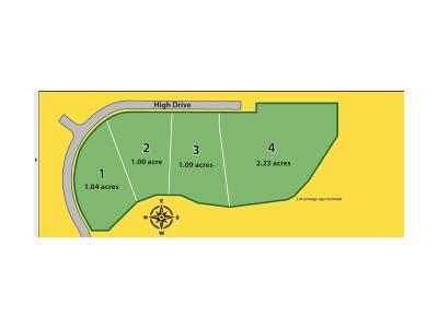 indianapolis Residential Lots & Land For Sale: 0003 High Drive
