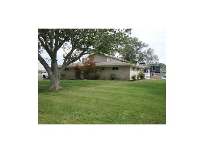 Henry County Single Family Home For Sale: 1465 East County Road 300 S