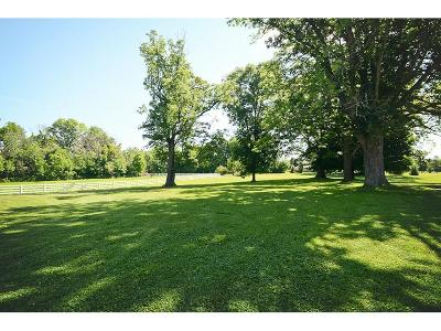 Zionsville Residential Lots & Land For Sale: 11910 East 500 S